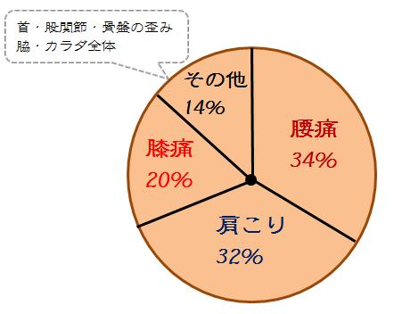 アンケート 円グラフ